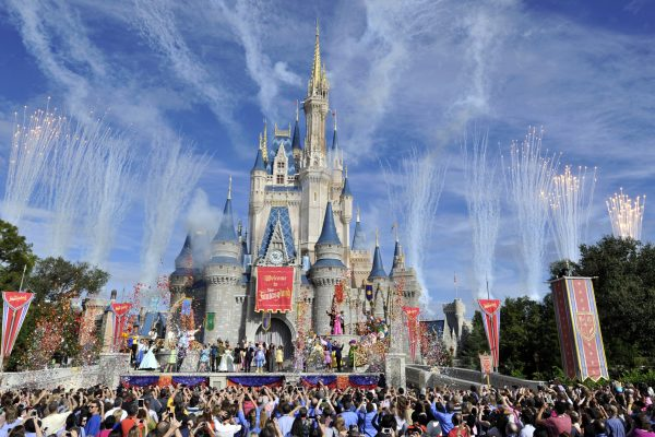 A Day Trip to Disneyland, Survival Tips